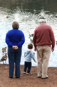 Grandparents with their grandchild feeding the ducks and geese at a pond